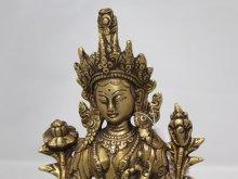 他の写真1: ネパール 真鍮 グリーンターラー(カディラヴァニーターラー)8インチ