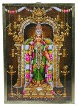 インド ヒンズー神フレーム ミーナクシa